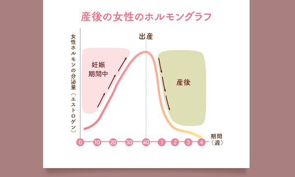 女性ホルモンの変化